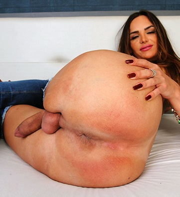 Big Ass Tranny Shemale Ladyboy Trans Porn videos